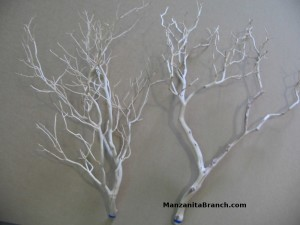 Sandblasted Manzanita Branches