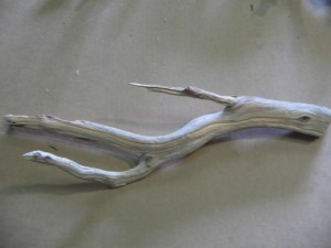 Manzanita Aquarium Wood